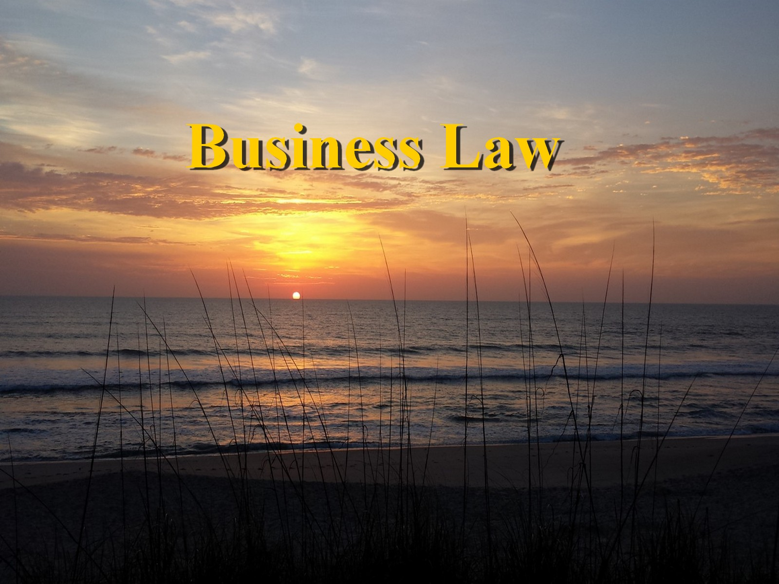 Business Law Attorney │ Melbourne, Palm Bay, Satellite Beach