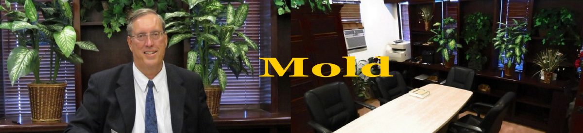 Herbert L. Allen, Jr., P.A., Mold Attorney, has experience with mold cases, including construction defects, moisture problems, personal injuries related to mold, and mold litigation for toxic mold problems.
